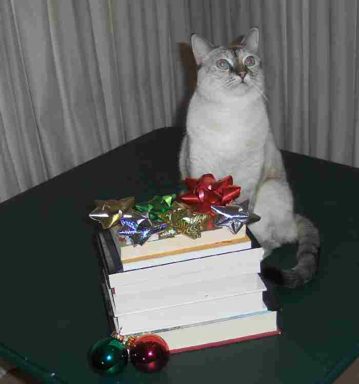 kitty with books