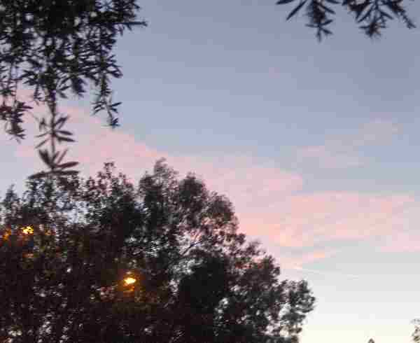pink clouds1