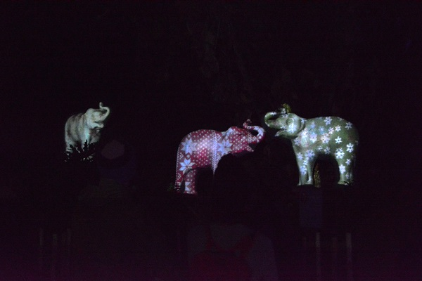Cement elephants on which light patterns ofsnowflakes and poinsettias are being projected at LA Zoo Lights